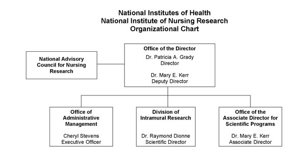 Overview of NINR Organizational Structure: Office of Director at Top, with DMS, DIR, DEA, and DSPPL below, followed by their respective Offices and Branches.
